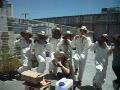 動画:横浜市新横浜駅近くのビルの屋上で採蜜18